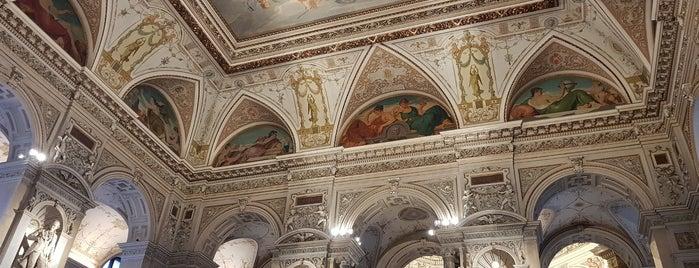 Café in der Kuppelhalle im Naturhistorischen Museum is one of Lieux qui ont plu à Paris.