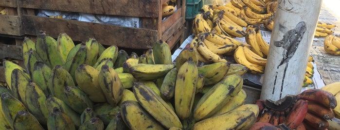 Mercado popular del sur is one of Nuestros productos.