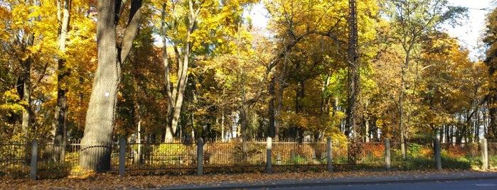 Mārtiņa kapi | St. Martin's cemetery is one of Locais salvos de Татьяна.