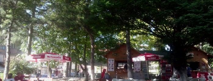 Araç Belediye Çay Bahçesi is one of Ertuğrul : понравившиеся места.