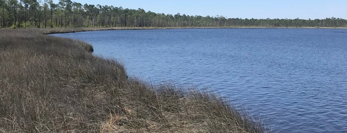 Tarklin Bayou State Preserve is one of Brittney's Liked Places.