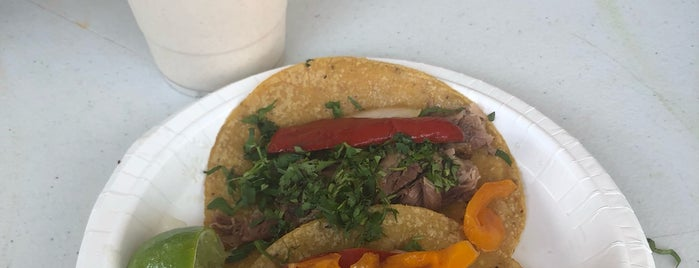 South Philly Barbacoa is one of Simple Creatures.