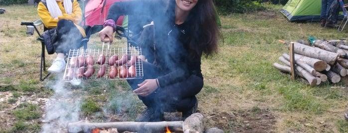 Çınarcık Erikli Şelalesi is one of Yalova.