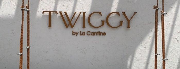 TWIGGY is one of Dubai 2021.
