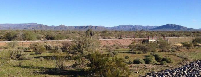 Sonoran Preserve is one of Dan : понравившиеся места.