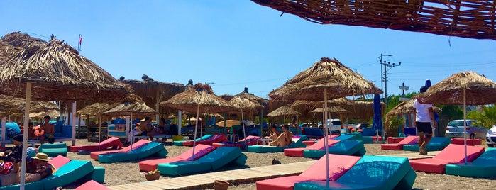 Ekinoks Beach & Restorant is one of Kadirga koyu plajları.
