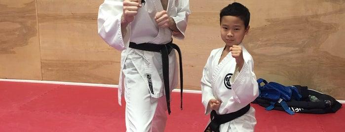 Goshin Ryu Martial Art & Fitness Studio is one of Lugares favoritos de Katie.