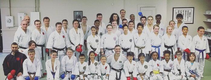 Fonseca Martial Arts - Evanston is one of Lugares favoritos de Ken.