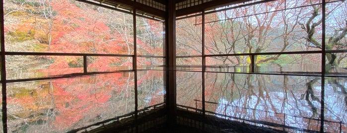 瑠璃光院 is one of 京都.