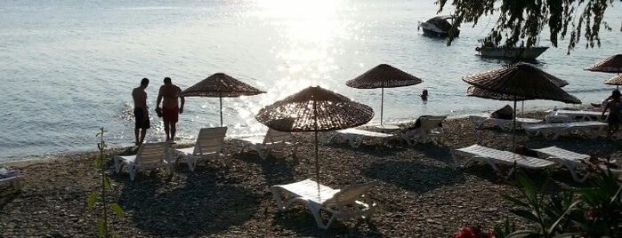 Aba Sahil is one of Marmara Adası.