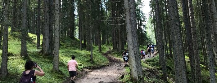 Radlweg Pragser-Wildsee is one of Italy 🇮🇹.