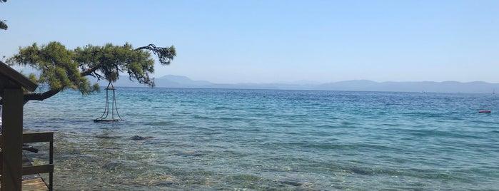 Yavansu Çiftliği is one of Plaj.