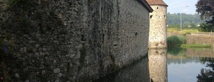 Schloss Hallwyl is one of Castles.