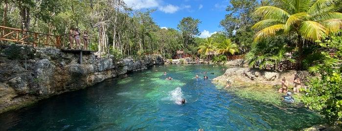 Cenotes Casa Tortuga is one of Tulum.