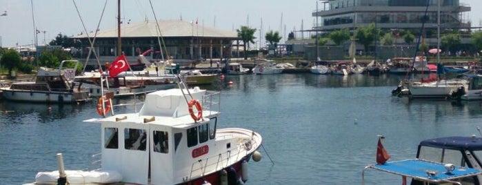 Balıkçı Barınağı is one of Mekanlarim.