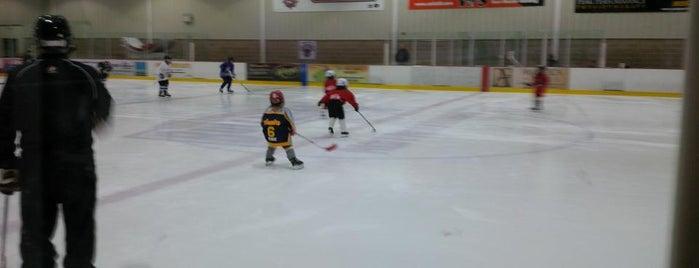 Mohawk 4 Ice Centre is one of Lieux qui ont plu à Ligia.