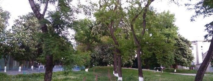 Парк Бруніцьких is one of Victor : понравившиеся места.