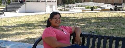 Plaza Bicentenario is one of Jose'nin Beğendiği Mekanlar.