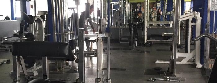Avalon Fitness is one of Tempat yang Disukai Chantal.