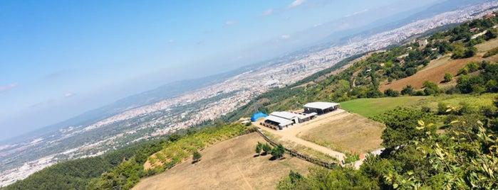 Meşe Kahvaltı & Et Mangal is one of Tempat yang Disimpan Ali Can.