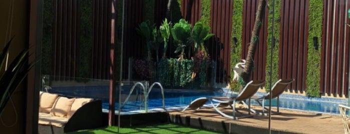 منتجع ورق التوت is one of Resort.