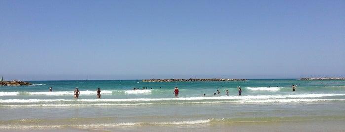 La Mer Beach is one of Tel Aviv Export.