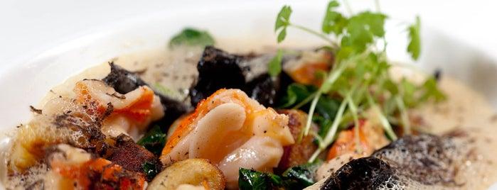 Philly's Hottest Restaurants