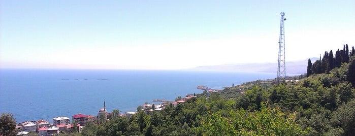 Salacık is one of Lugares favoritos de Esen.