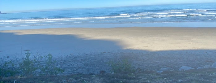 UCSD Surfing Black's Beach is one of The Best Spots in San Diego, CA! #visitUS.