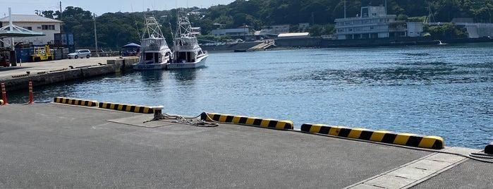 波浮港 is one of 高井さんのお気に入りスポット.
