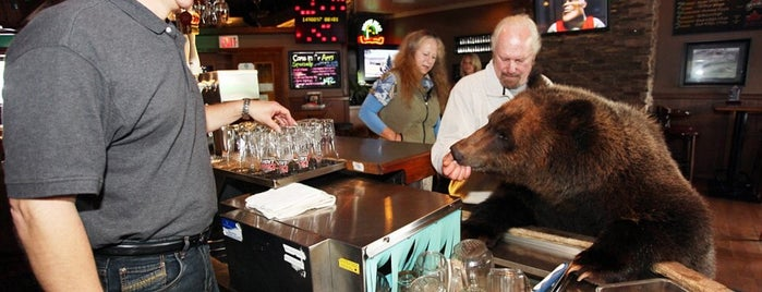 Teddybear's Bar And Grill is one of Bar.