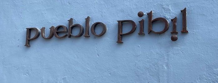 Pueblo Pibil is one of Pendientes de ir.