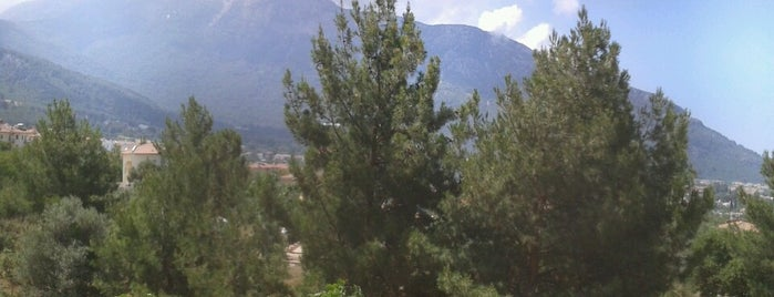 Fethiye Polisevi is one of Lieux qui ont plu à Murat.