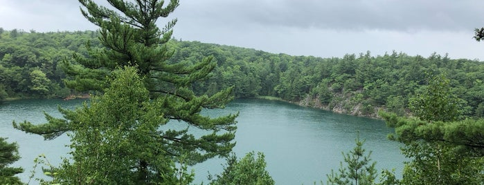 Pink Lake Lookout is one of Patricia Carrier's Liked Places.