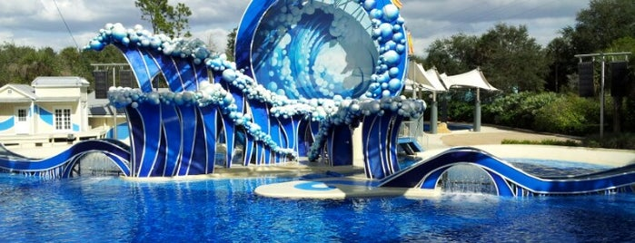 SeaWorld Orlando is one of The Most Popular Theme Parks in U.S..