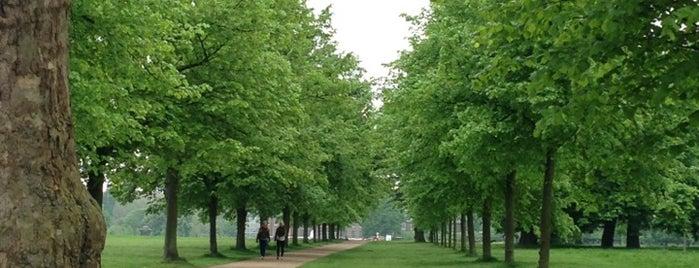 Hyde Park is one of Lugares donde estuve en el exterior.