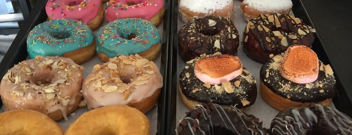 Jolly Molly Donuts is one of Posti salvati di Fabiola.
