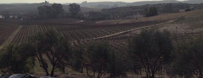 Artesa Vineyards & Winery is one of Beth 님이 좋아한 장소.