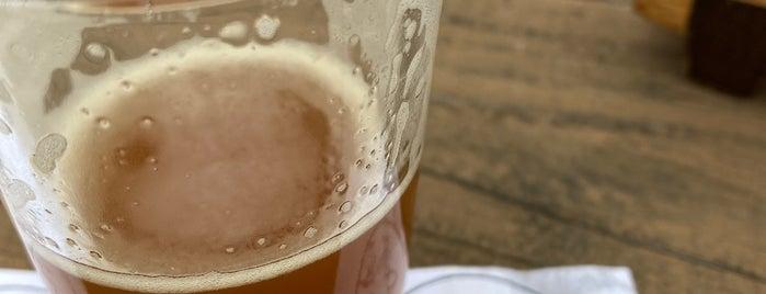 Ghost Monkey Brewery is one of สถานที่ที่ Michael ถูกใจ.