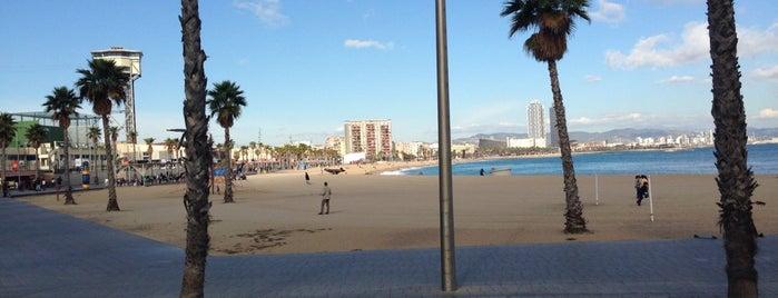 Pez Vela is one of Blog de Barcelona: los mejores sitios!.
