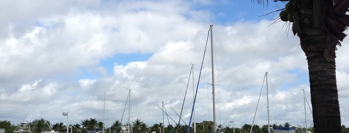 Black Point Marina is one of Miami: history, culture, and outdoors.