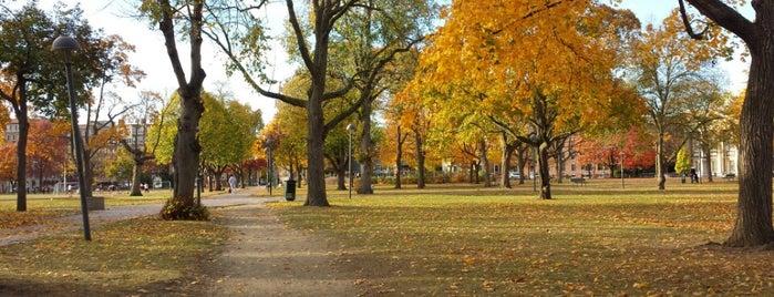 Cambridge Common Park is one of Boston.