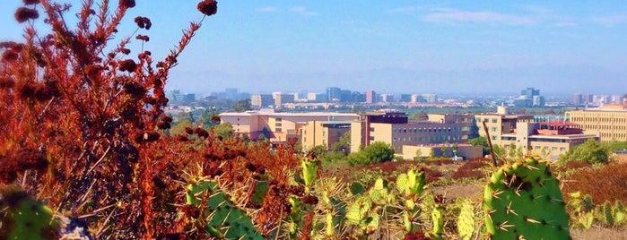 University of California, Irvine (UCI) is one of Alpha Sigma Phi Fraternity.