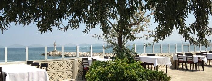 Yakamoz restaurant is one of Rakı İçilir.