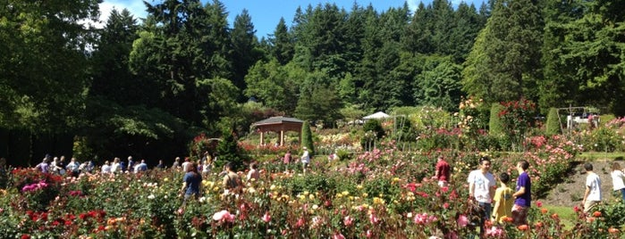 International Rose Test Garden is one of Portland!.