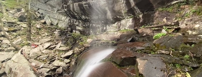 Rainbow Falls Trail is one of Asheville.