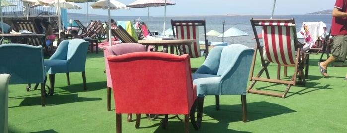 Beyaz Balina Beach Club is one of Orte, die Nlguen gefallen.