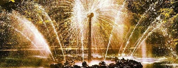 Фонтан «Солнце» is one of Питерские каникулы 2014.