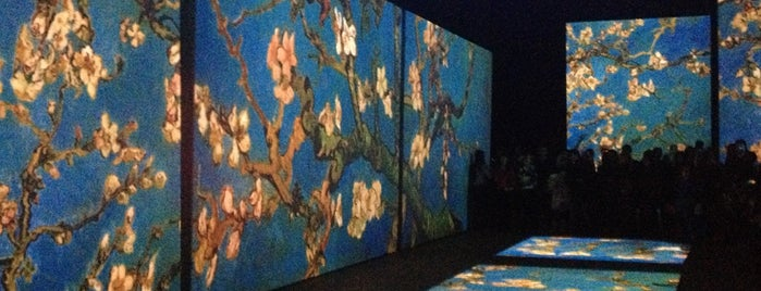 Van Gogh Alive is one of Locais curtidos por Olik.