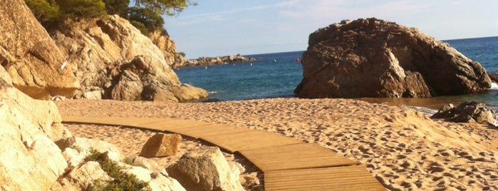 Playa de Canyelles is one of Costa Brava.